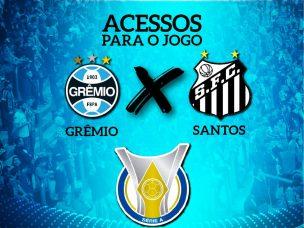 ARENA CAPAS REDES BRASILEIRÃO SANTOS 2019_site4 570px x 427px Release